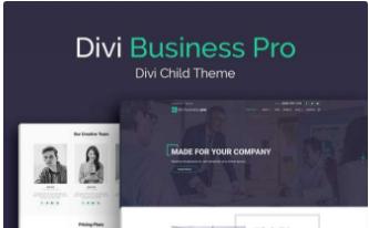 DIVI Business Pro $59.00 Single Website Use